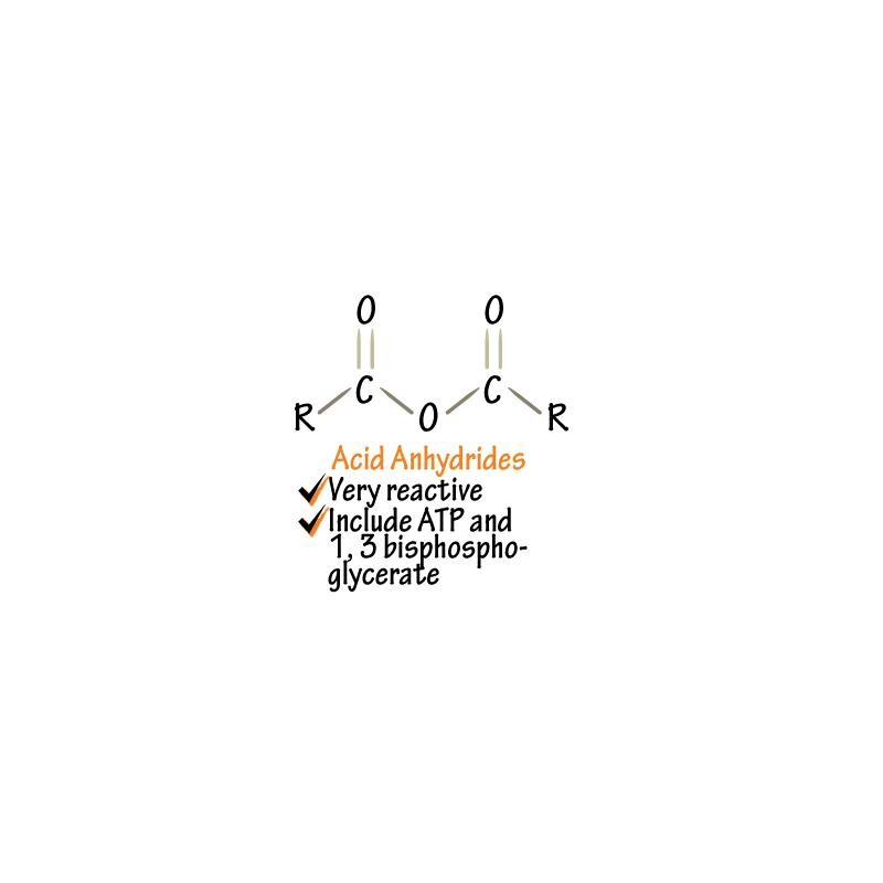 Biochemistry Glossary: Acid Anhydride | Draw It to Know It