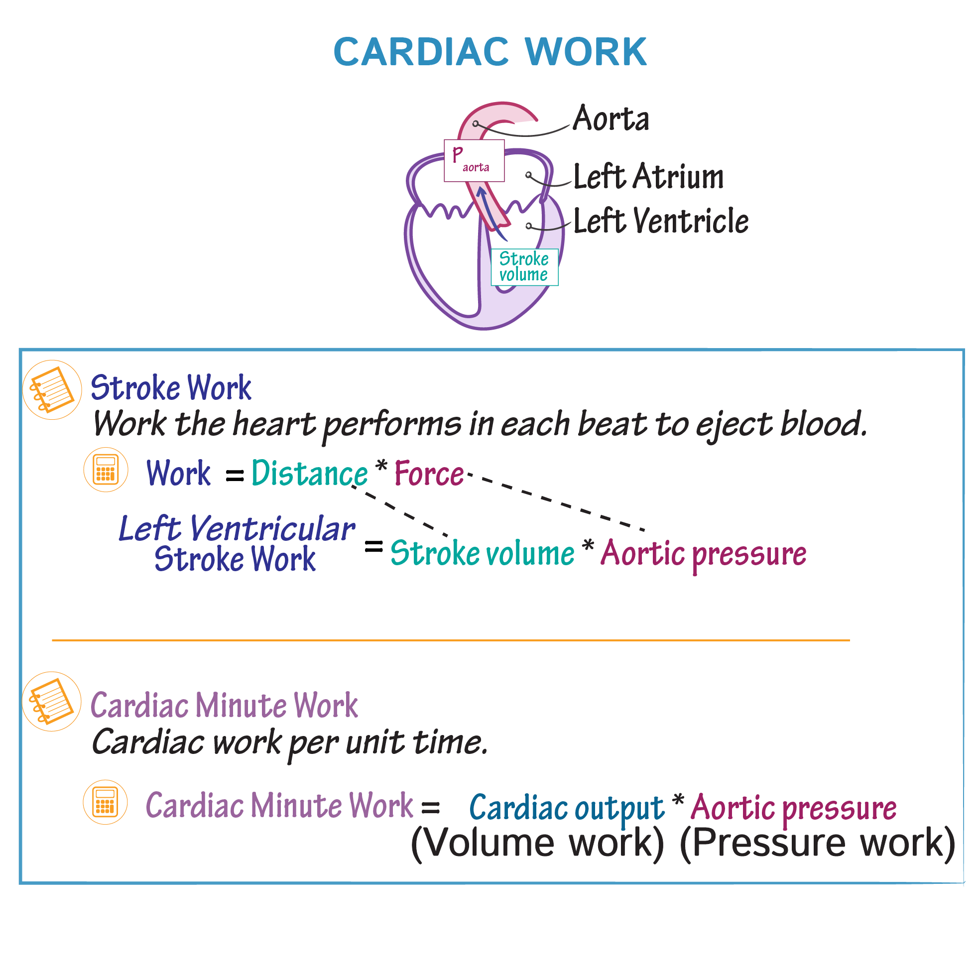 Physiology Glossary Cardiac Work Draw It To Know It